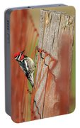 Yellow-bellied Sapsucker 2 Portable Battery Charger