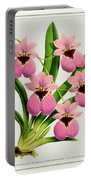 Orchid Vintage Print On Tinted Paperboard Portable Battery Charger