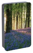 Stunning Bluebell Forest Landscape Image In Soft Sunlight In Spr Portable Battery Charger