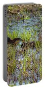 Green Heron Looking For Food Portable Battery Charger
