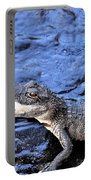 Little Gator Portable Battery Charger