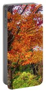 Sagamore Hill Portable Battery Charger