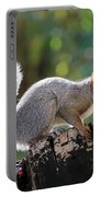 Squirrel Friend Portable Battery Charger