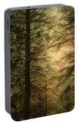 Stunning Fine Art Landscape Image Of Winter Forest Landscape In  Portable Battery Charger