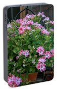 Variegated    Portable Battery Charger