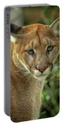 Puma Portable Battery Charger