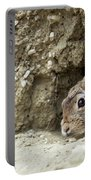 Cottontail Rabbit Portable Battery Charger by Michael Chatt