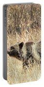 Grizzly Bear Portable Battery Charger by Michael Chatt