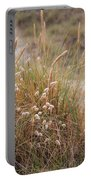 Late Evening Sunset Summer Rays Of Sun Light Up Sand Dunes And G Portable Battery Charger