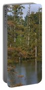 Tennesse Cypress In Wetland  Portable Battery Charger