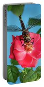Dragonfly On A Flower Of A Red Rose. Macro Photo Portable Battery Charger