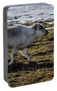 Svalbard Reindeer Portable Battery Charger