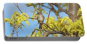 Willow Flycatcher Portable Battery Charger