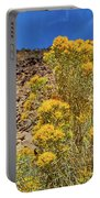 Idaho Landscape Portable Battery Charger by Dart Humeston