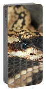 A Close Up Of A Mojave Rattlesnake Portable Battery Charger