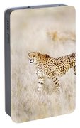 A Pair Of Cheetahs Move Steathily Through The Long Grass Of The  Portable Battery Charger
