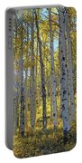 Afternoon Aspens Portable Battery Charger