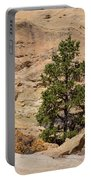 Amazing Life On The Sandstone Cliffs Portable Battery Charger