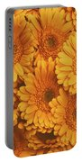 Amber Soaked Portable Battery Charger