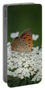 American Copper On Queen Anne's Lace Portable Battery Charger