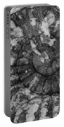 Ammonite Fossil Bw Portable Battery Charger
