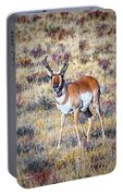 Antelope Buck 2 Portable Battery Charger