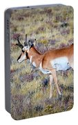 Antelope Buck Portable Battery Charger