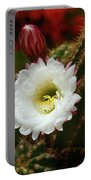 Argentine Giant White Flower And Red Bud Portable Battery Charger