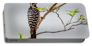 Arizona Ladderback Woodpecker Portable Battery Charger