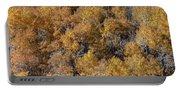 Aspen Autumn Leaves Portable Battery Charger