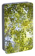Aspen Canopy With Sun Flare Portable Battery Charger