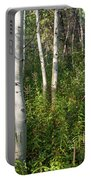 Aspen Solitude Portable Battery Charger
