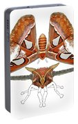 Atlas Moth4 Portable Battery Charger