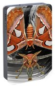 Atlas Moth8 Portable Battery Charger