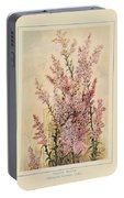 Australian Wild Flowers  8 Portable Battery Charger