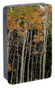 Autumn As The Seasons Change Portable Battery Charger