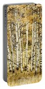 Autumn Aspen Portable Battery Charger by Brad Allen Fine Art