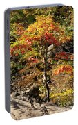Autumn Color In Smoky Mountains National Park Portable Battery Charger