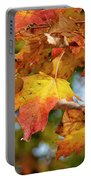 Autumn Colour Portable Battery Charger