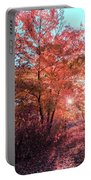 Autumn Path Reimagined Portable Battery Charger