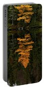 Autumn Tamarack  Portable Battery Charger by Doug Gibbons