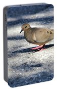 Baby Mourning Dove Portable Battery Charger