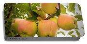 Backyard Garden Series - Apples In Apple Tree Portable Battery Charger