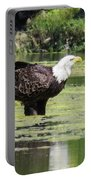 Bald Eagle's Look Portable Battery Charger
