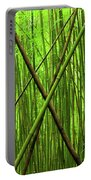 Bamboo X Portable Battery Charger