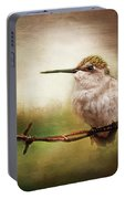 Barbed Wire Hummingbird Perch Portable Battery Charger