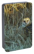 Barn Owl, Yolo County California Portable Battery Charger