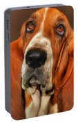 Basset Dog Portrait Portable Battery Charger