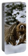 Bear In The Snow Portable Battery Charger