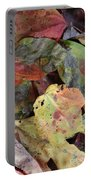 Beauti Fall Portable Battery Charger